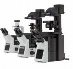 IX73 倒置显微镜