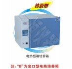 DHP-9162 电热恒温培养箱